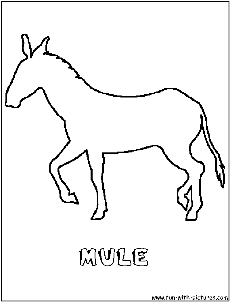 800x1050 Mule To Color Mile To Calorie Converter