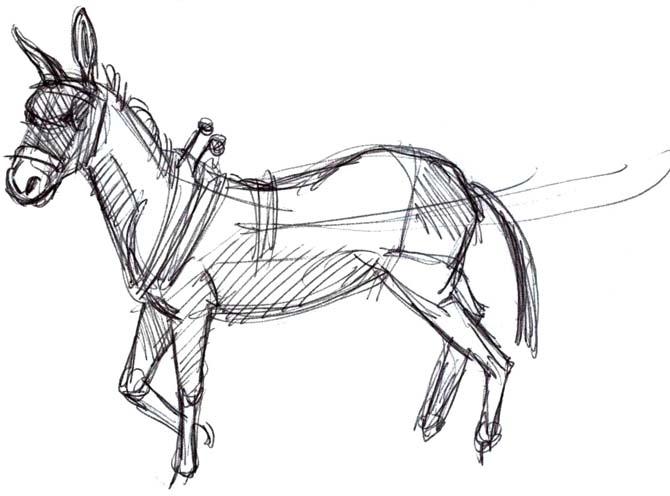 670x496 Art By Jeane Nevarez Mule In Harness