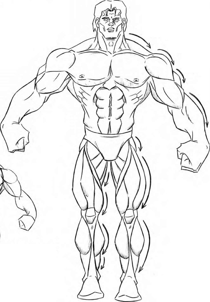 This is a picture of Dynamic Muscular Guy Drawing