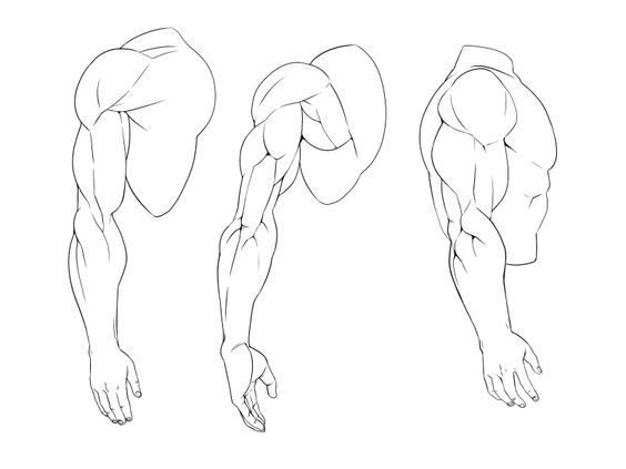Muscle Arms Drawing