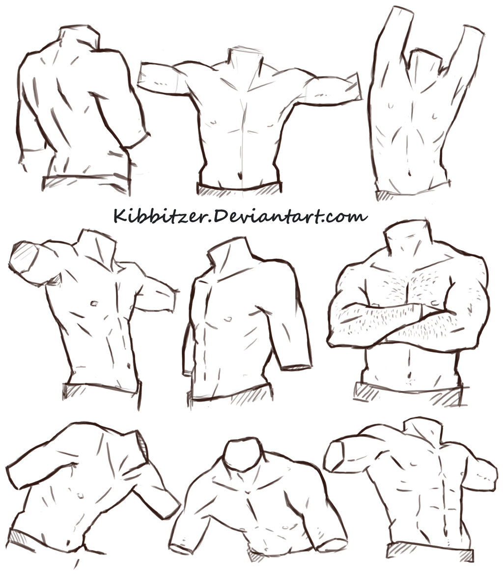 1024x1188 Male Torso Reference Sheet By Kibbitzer