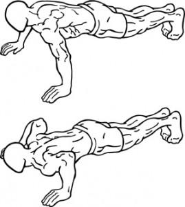 269x300 The Massive Muscle Anatomy And Body Building Guide You Always