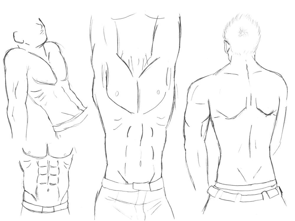 1000x748 Sketch Male Body Study By Hikarurauchio