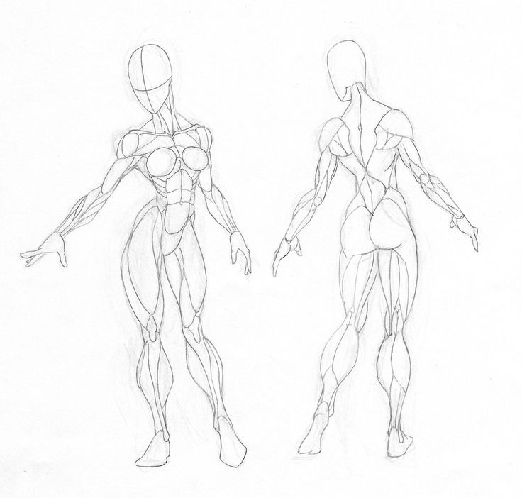 736x702 13 best Figure Drawing images on Pinterest Drawing techniques