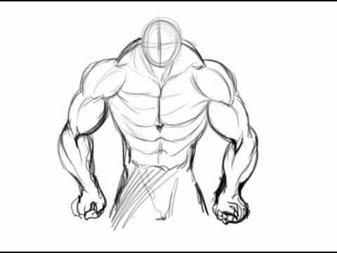 480x360 how to draw muscles 9 art how to pinterest muscles and drawings
