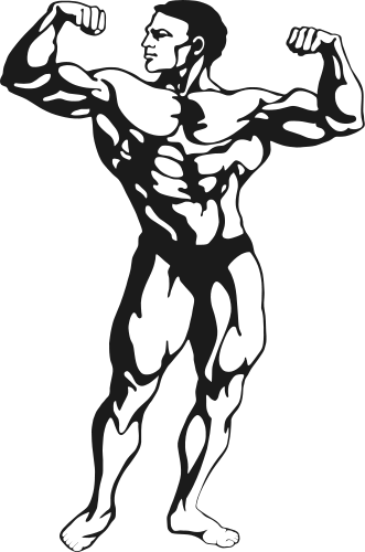 331x500 Fitness Muscle Man