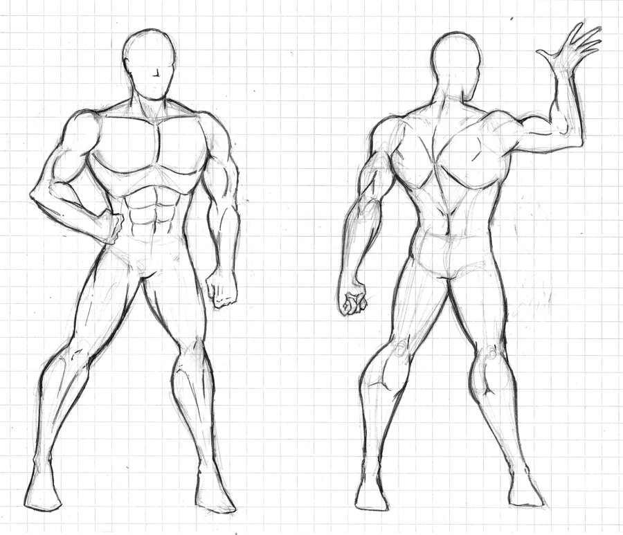 Muscular Body Drawing at GetDrawings.com | Free for personal use ...