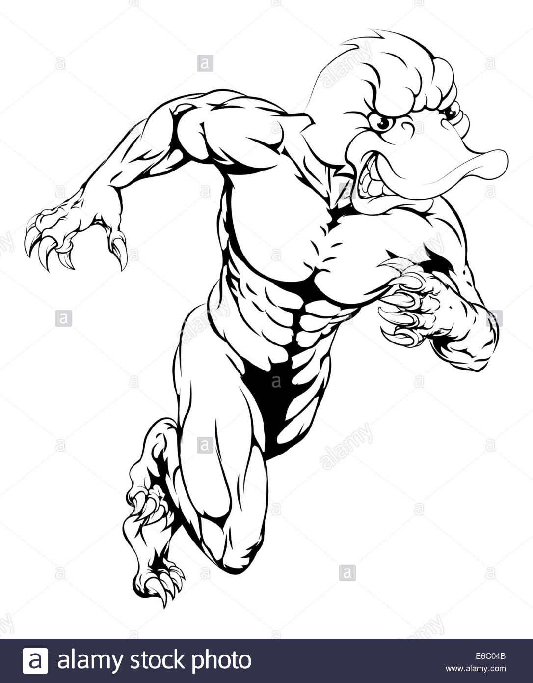 1086x1390 An Aggressive Muscular Duck Sports Mascot Character Charging Stock