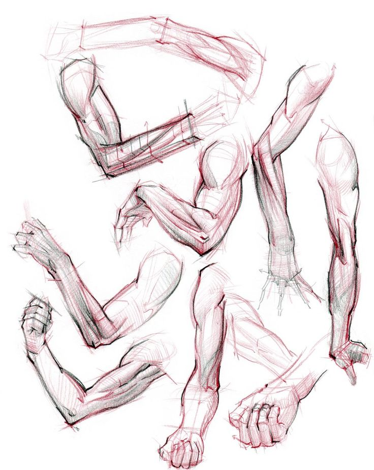 Muscular Legs Drawing