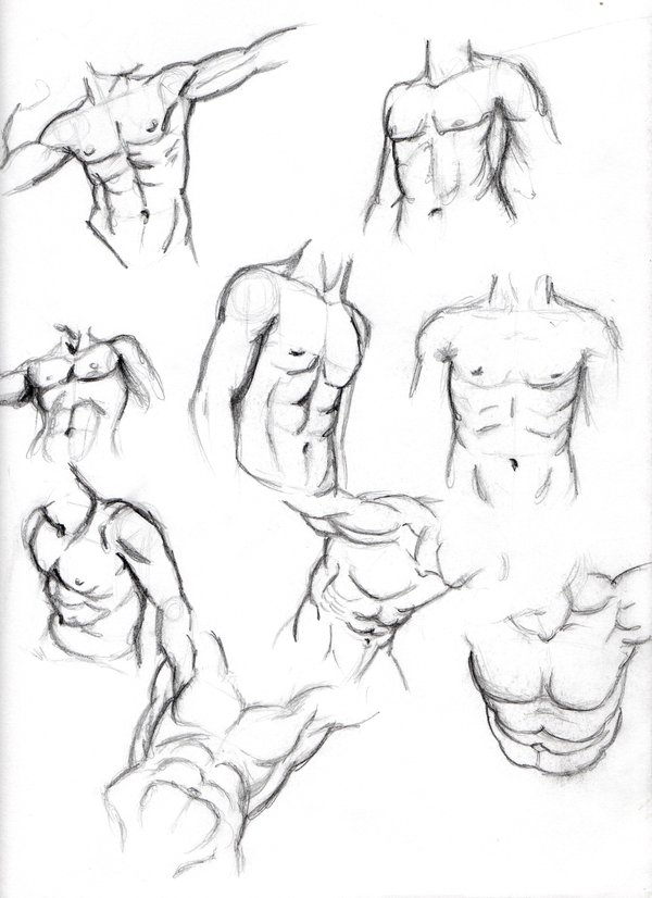 600x826 Male Body Sketches By Vinnie14