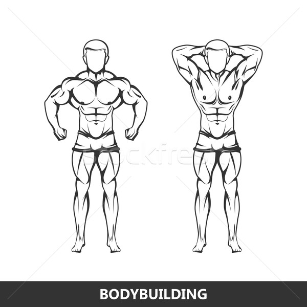 600x600 Vector Illustration Of Muscled Man Body Silhouettes. Posing
