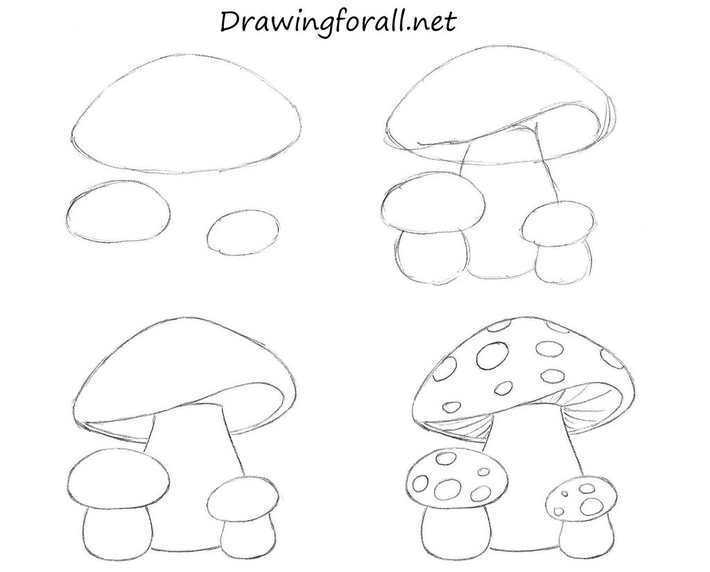 1024x826 How To Draw Mushrooms For Kids By Stevelegrand