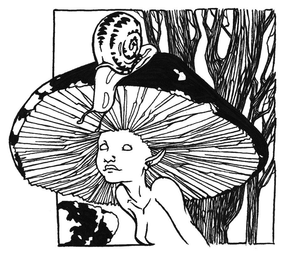 900x814 Mushroom Girl By On @ Setas Y