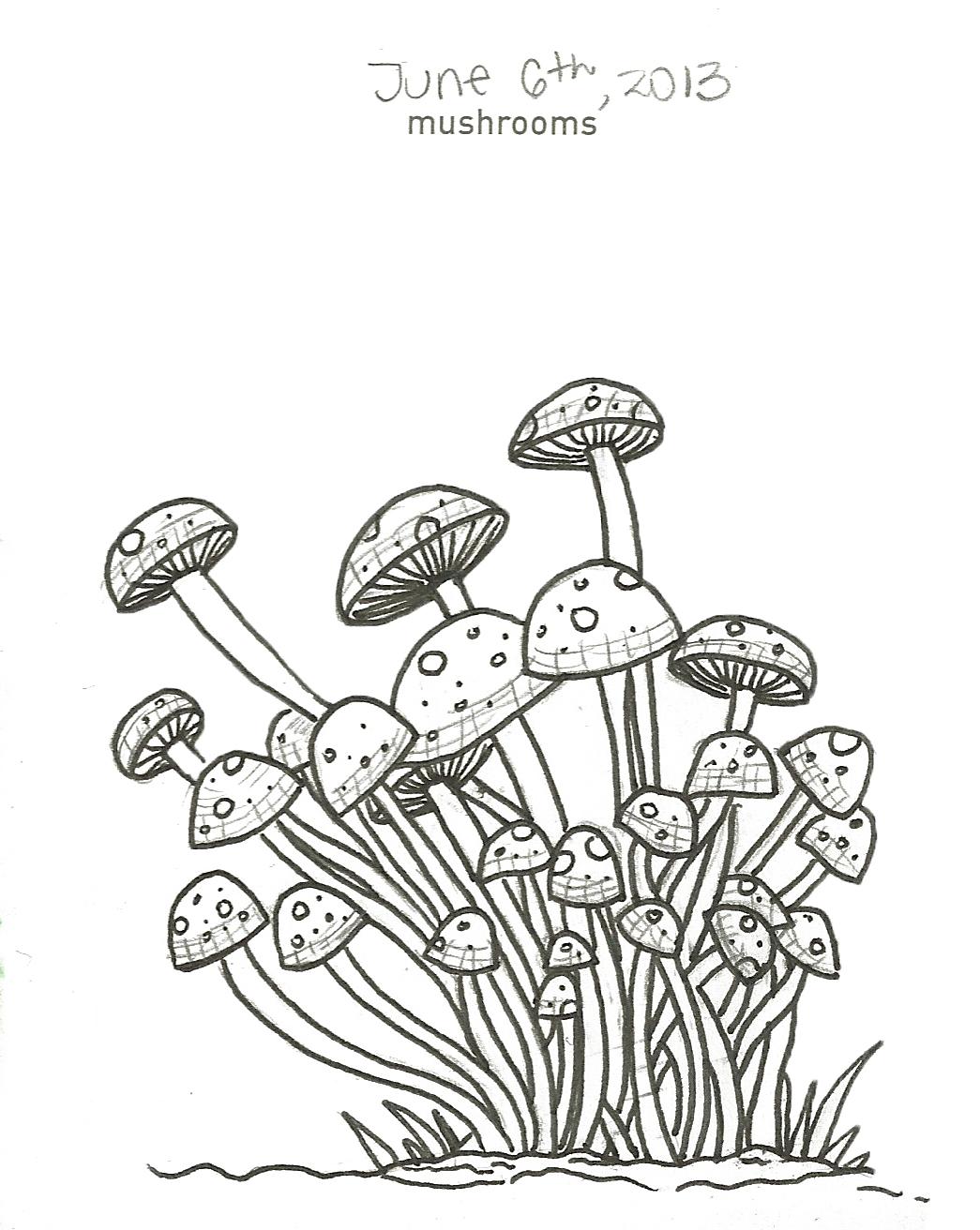 1045x1312 014 Mushrooms Doodle Company