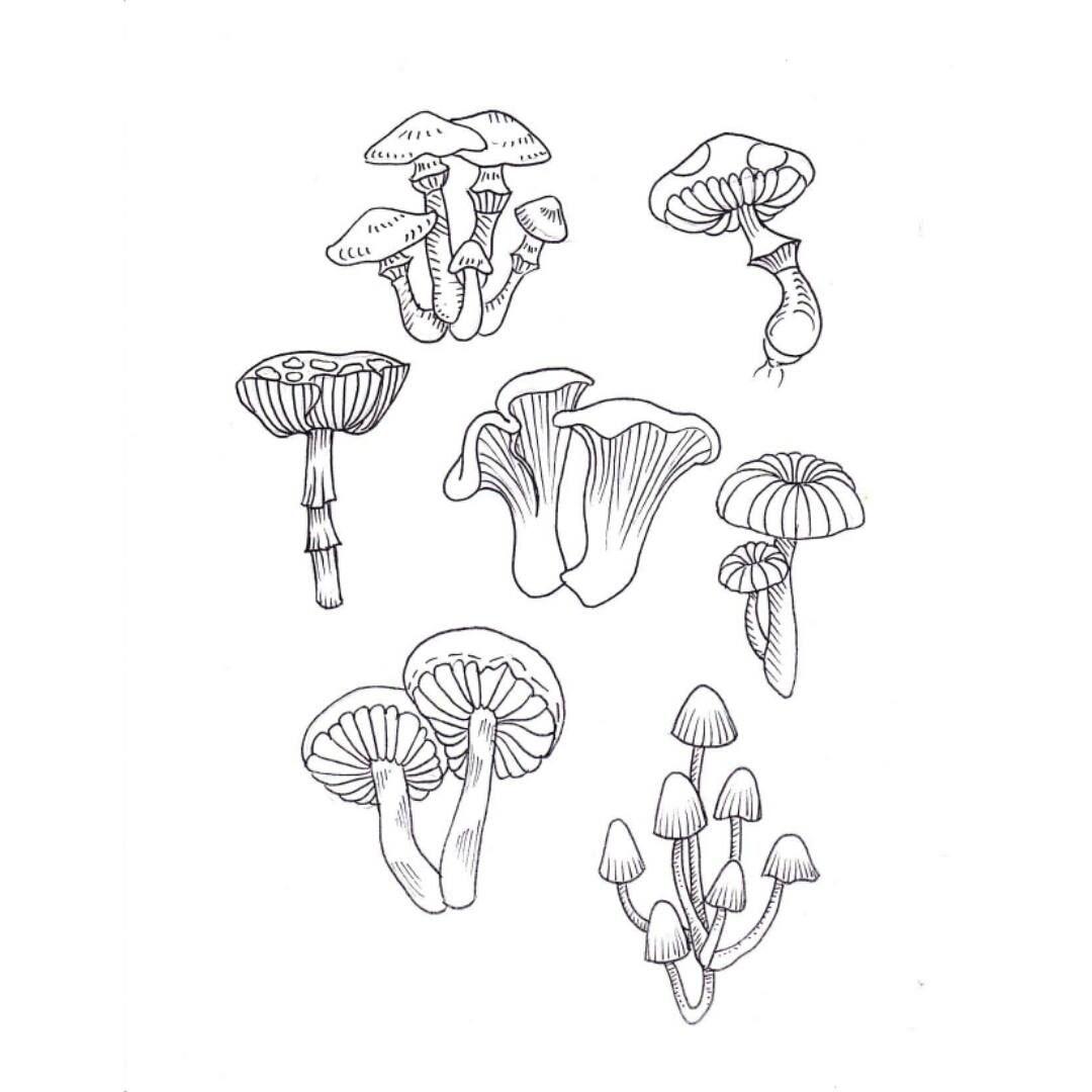 1080x1080 Mushroom