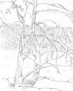 236x292 Mushroom Canvas Print Canvas Art By Blg H Mushroom Drawing