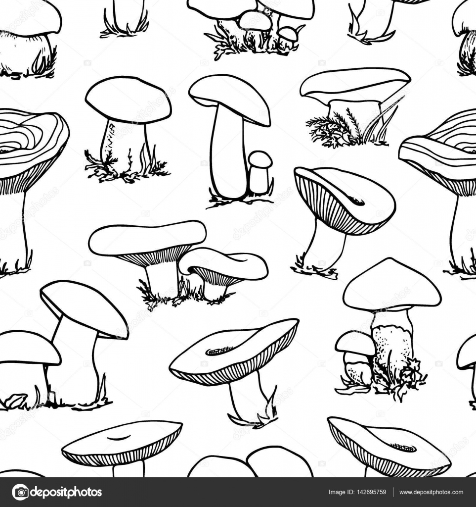 963x1024 Mushrooms Seamless Pattern Stock Vector Ezhevica