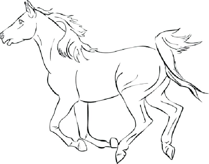 800x629 Complete Free Horse Coloring Pages Download Mustang 1 Printable