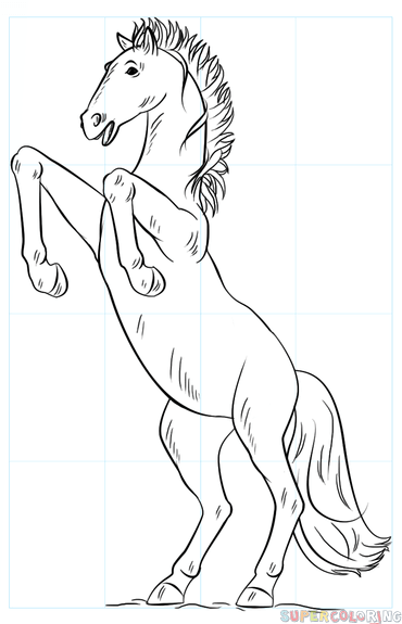 370x575 How To Draw A Mustang Horse Step By Step Drawing Tutorials