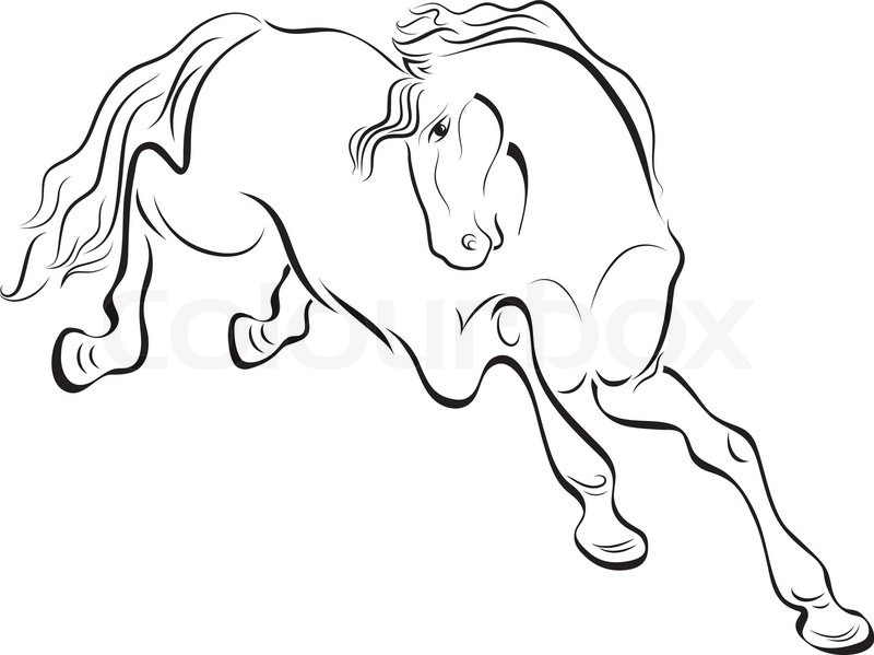 800x599 Black And White Outline Horse Vector Drawing. Stock Vector
