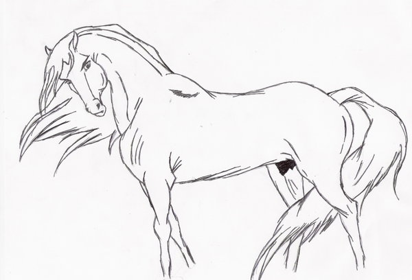 600x408 Lone Stallion Lineart By Mustang Spirit