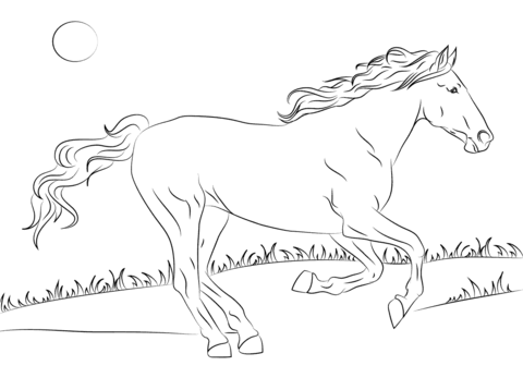 480x358 Beautiful Mustang Horse Coloring Page Free Printable Coloring Pages