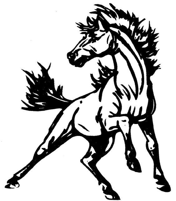 564x645 Mustang Horse Coloring Pages