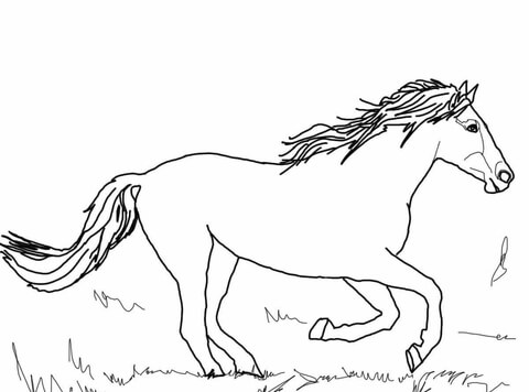 480x356 Running Mustang Coloring Page Free Printable Coloring Pages