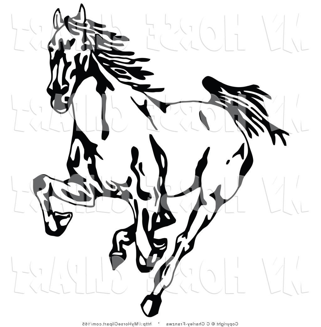 1024x1044 Best Hd Clipart Horses Mustangs Image