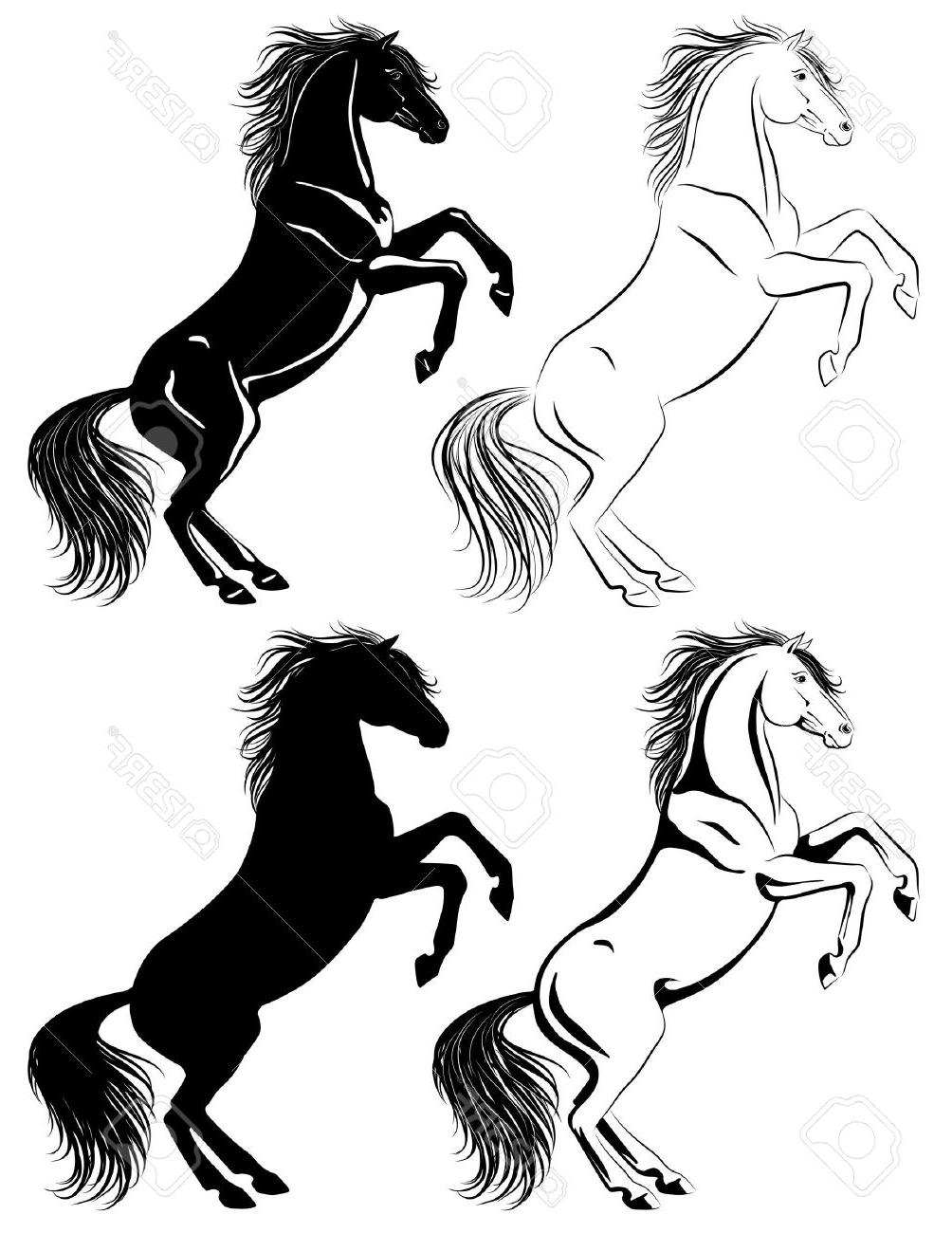 1004x1300 Best Hd Set Of Rearing Horse Illustrations In Different Techniques