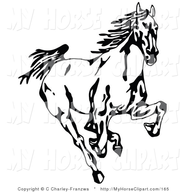 600x620 Clip Art Of A Black And White Wild Mustang Horse Running Forward