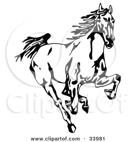 450x470 Clipart Illustration Of A Black And White Wild Mustang Running