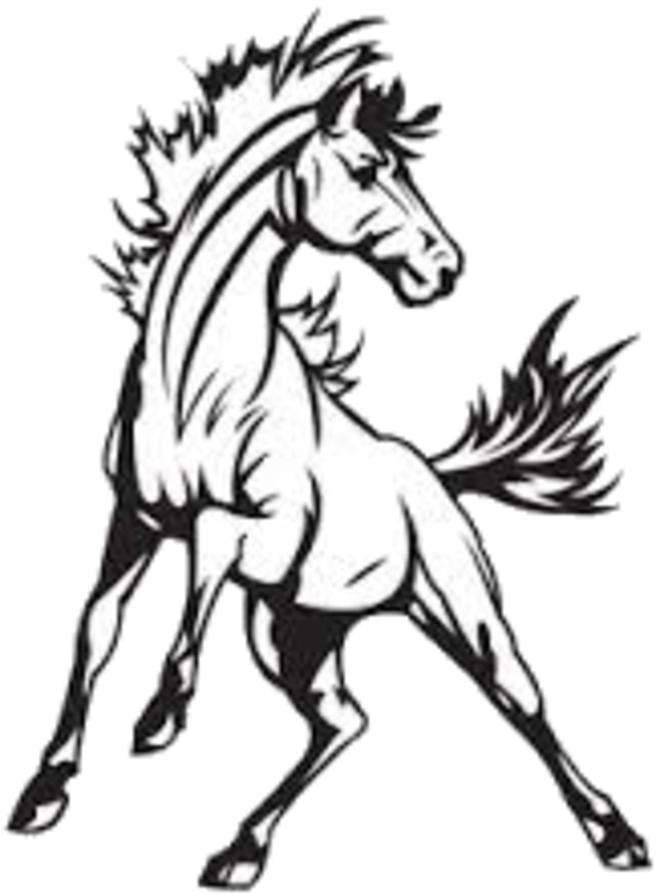 720x982 The Murray Mustangs