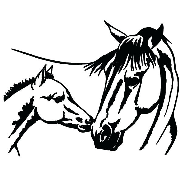 600x600 Mustang Horse Coloring Pages Horse And Foal Coloring Page Free