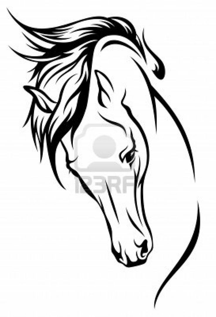 736x1078 Drawn Night Horse Outline