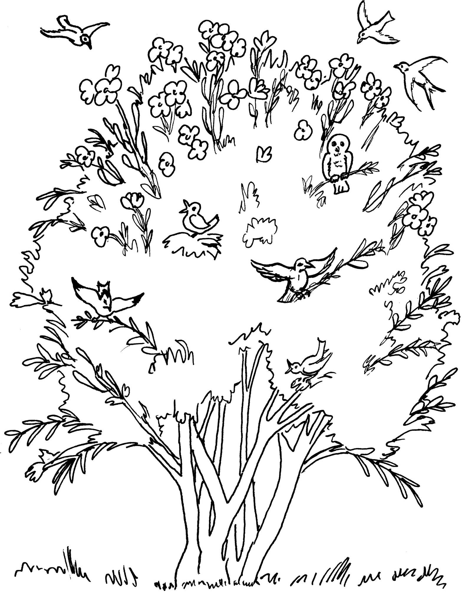 1595x2048 Parable Of The Mustard Seed Coloring Pages