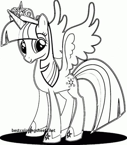 Kleurplaten My Little Pony Twilight Sparkle.My Little Pony Twilight Sparkle Drawing At Getdrawings Com Free