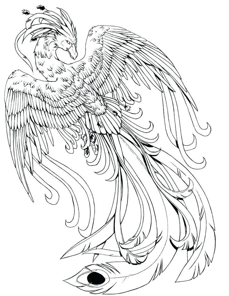736x952 Mythical Creatures Coloring Pages Also Mythical Creature Coloring