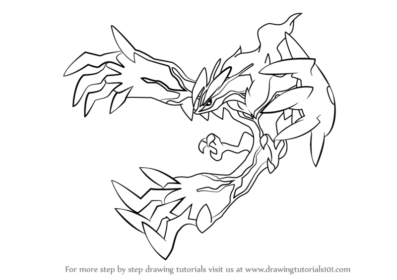800x566 Learn How To Draw Yveltal From Pokemon (Pokemon) Step By Step