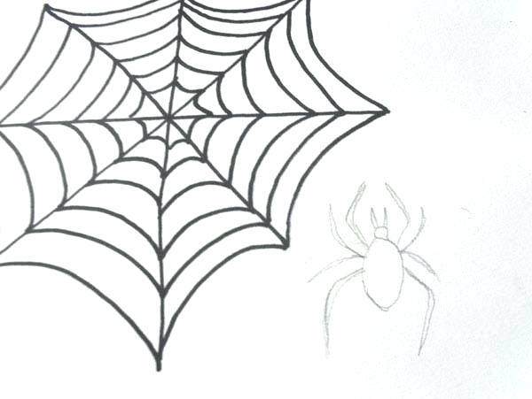 600x451 How To Draw A Spider Web Abundantlifestyle.club