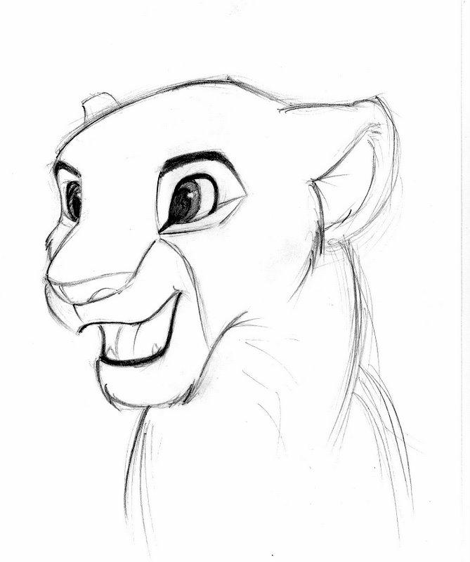 Nala Lion King Drawing At GetDrawings.com