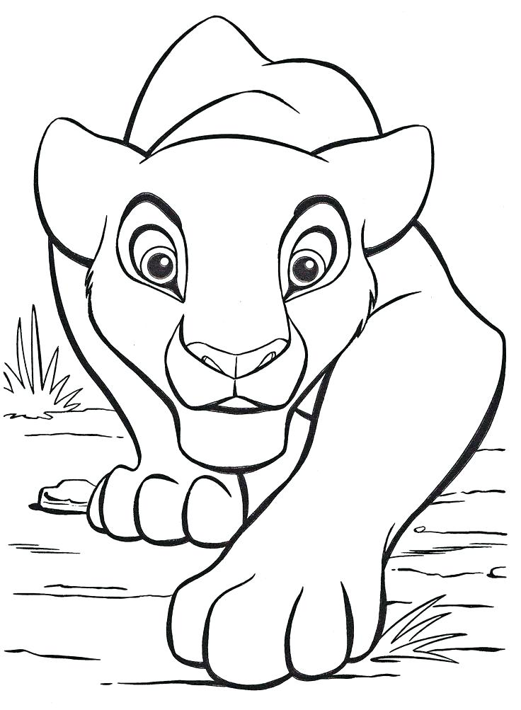 736x1003 Coloring Pages Of Lion Free Printable Male Lion Coloring Page