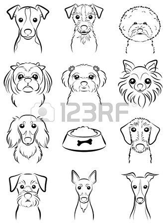 338x450 Dog Line Drawing Royalty Free Cliparts, Vectors, And Stock