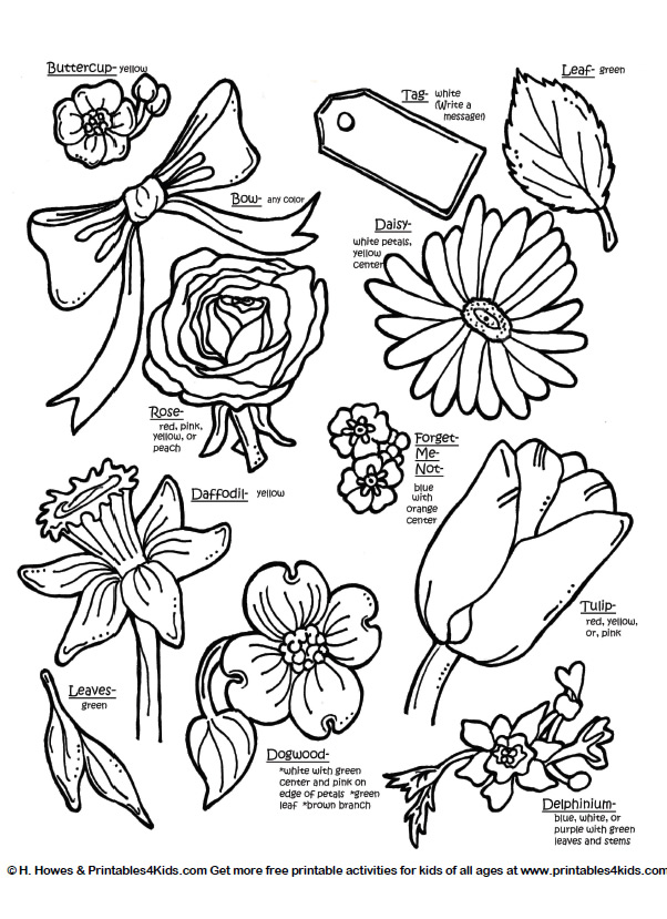 602x829 Botanical Flowers With Names Printables For Kids Free Word