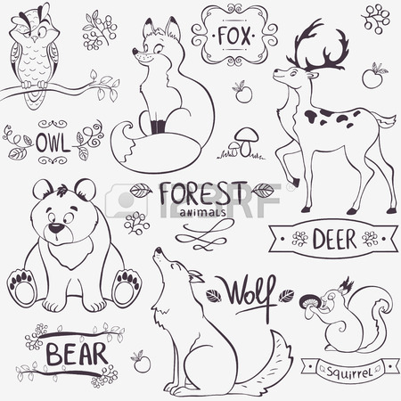 450x450 Illustration Set Of Cute Animals Of The Forest With Design Names
