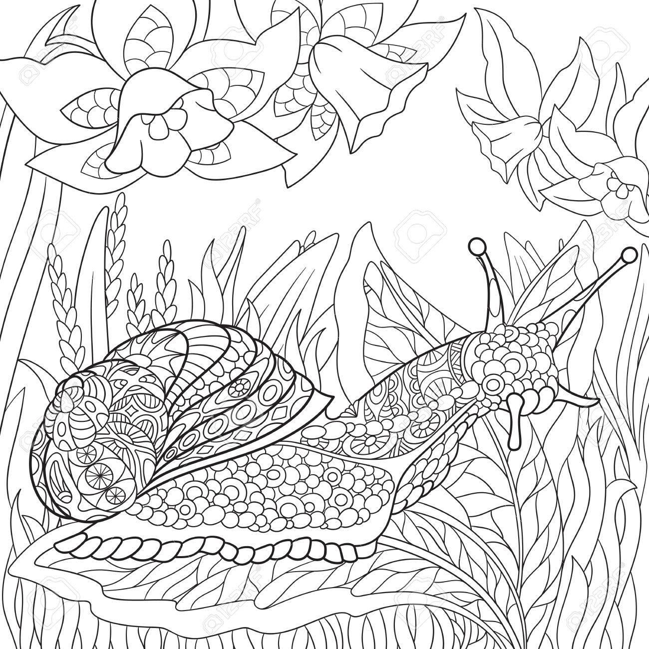 1300x1300 Zentangle Stylized Cartoon Snail Crawling Among Narcissus Flowers