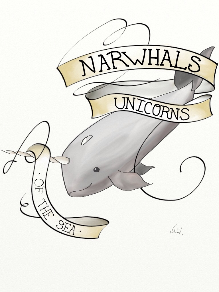 768x1024 Daily Drawing Narwhals Love Drawings, Unicorns