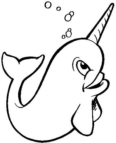 403x493 28 Images Of Narwhale Drawing Template