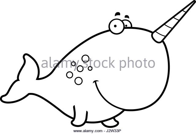 640x437 A Narwhal Tusk Stock Vector Images
