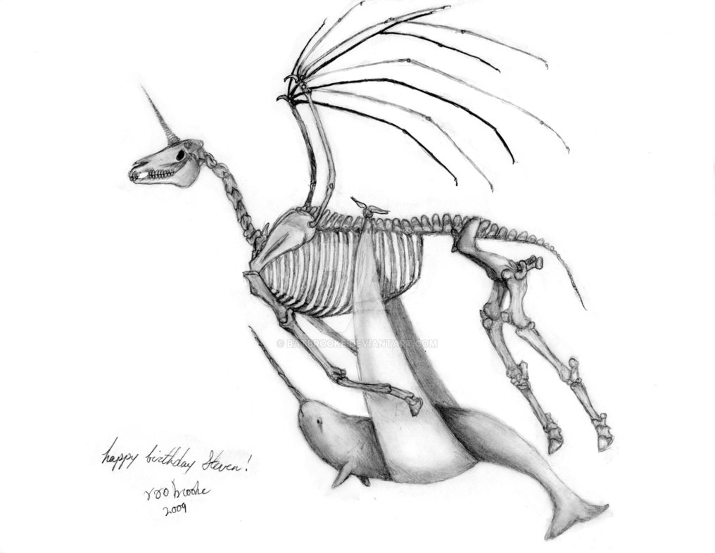 1016x786 Skeletal Unicorn And Narwhal By Batbrooke